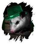 St Patrick's Day Possum