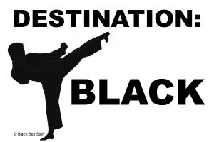 Destination:  BLACK Karate Tee Shirts Apparel Gift