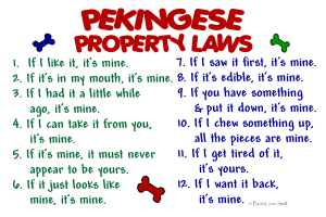 Pekingese Property Laws 2