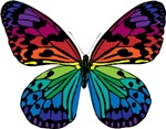 Psychadelic Butterfly