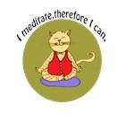 Yogi Meditation Attitude