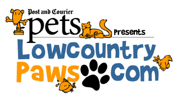 Lowcountry Paws