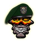 US Army Special Forces Skull