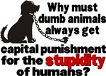 Stupidity of Humans (BSL)