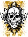 Grunge Feather Skull