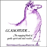 Llamatude Designs