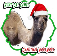 Hump Day Camel Christmas Designs