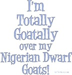 Totally Goatally Nigerian Goat