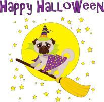 Halloween Pug Witch