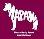 MaPaw Husky