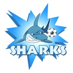SHARKS SOCCER TEAM T-SHIRTS AND GIFTS
