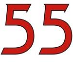 Vain 55