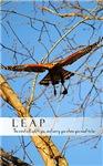 LEAP Motivational Red Shouldered Hawk Flying