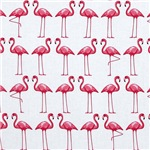 Loads of Flamingos