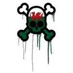 Welsh Punk Skull