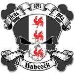 Babcock Family Crest Skull