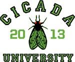 Cicada University 2013
