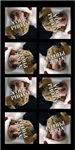 8 Photo Collage