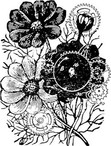 Flowers And Gears Black