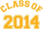 Yellow Class of 2013 T-shirts