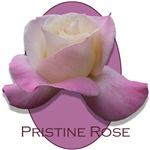 <h2>MORE ROSES<br />page 1<h2/>