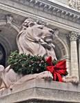 NY Public Library Lion