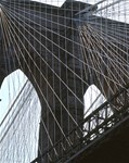 Brooklyn Bridge: Wires