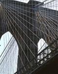 Brooklyn Bridge: Wires