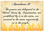 10th amendment on fire