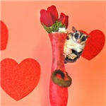 Valentine's Day #3