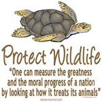 Protect the Turtles