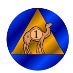 The Sober Camel Anniversary Cards & Gifts