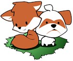 Fox and the Shih Tzu