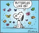 Butterfly Beagle