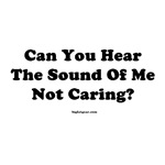 Can You Hear the Sound Of Me Not Caring?