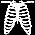 Rib cage bones