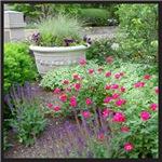 Flower Garden With Urn