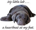 Lab Heartbeat