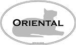 Oriental Shorthair Cats