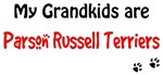 Russell Terrier Grandkids