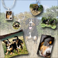 Photographic Entlebucher Mountain Dog  Gifts