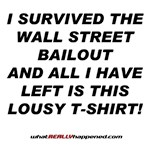 I SURVIVED THE BAILOUT