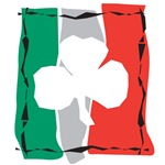 Shamrock Ireland Flag Edgy