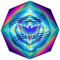 Atom Bird