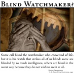 The Blind Watchmaker?
