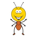 Ant Smiley Face