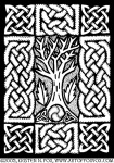 Celtic Knotwork and Bare Branches