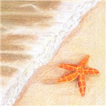 Starfish Vacation Linens