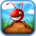 Pocket Ants!