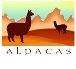 Alpacas - mountain landscape
